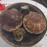 Coquillages sur marché au poisson